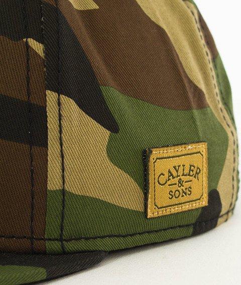 Cayler & Sons-WL Amsterdam Snapback Camo