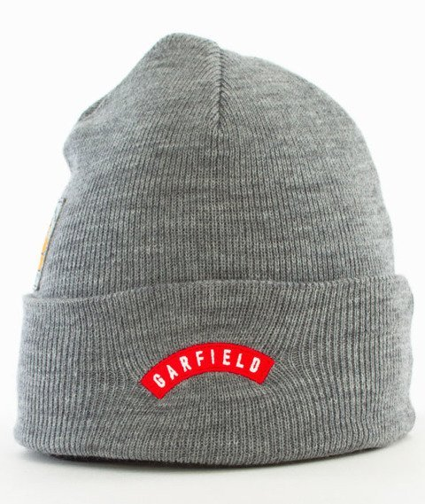 Cayler & Sons-WL Hyped Garfield Old School Beanie Grey