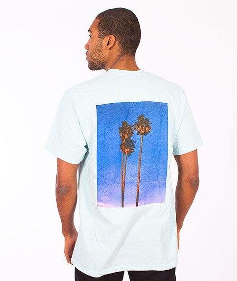 Stussy-Palms IT Blue